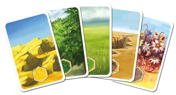 Kingdom Builder Terrain Cards